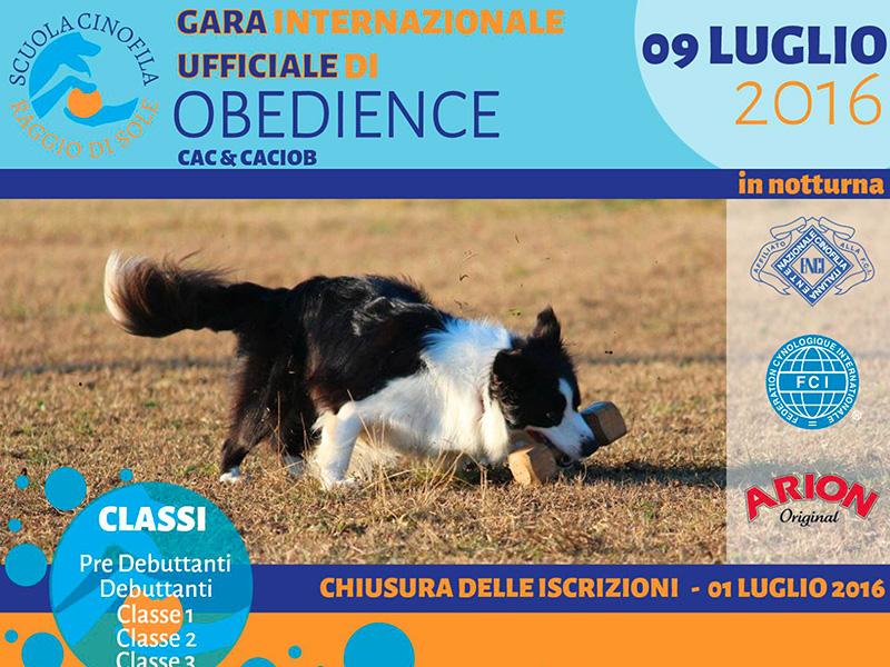 Gara Internazionale di Obedience