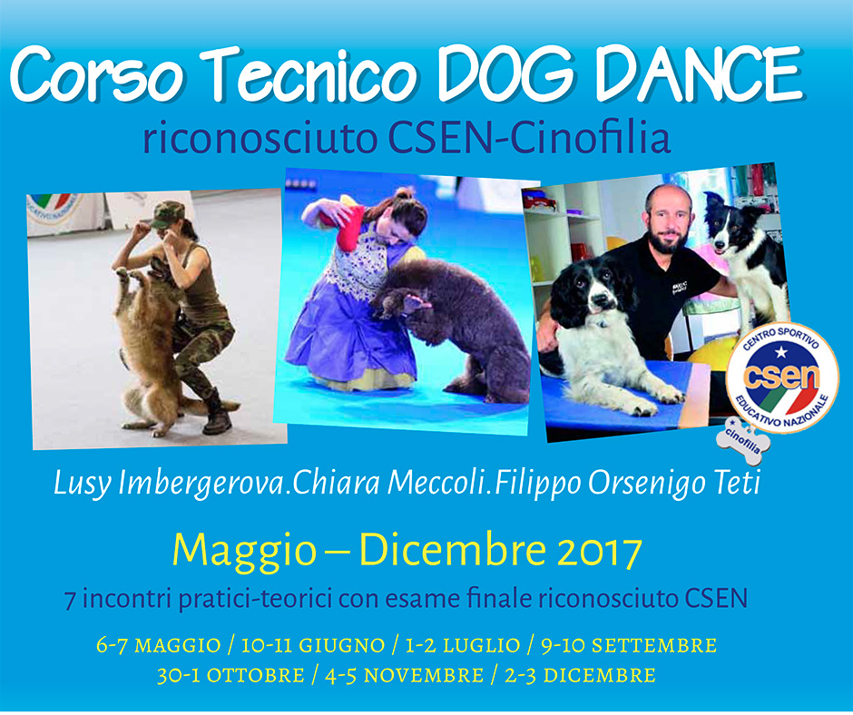 st_tecnico-dog-dance_2017